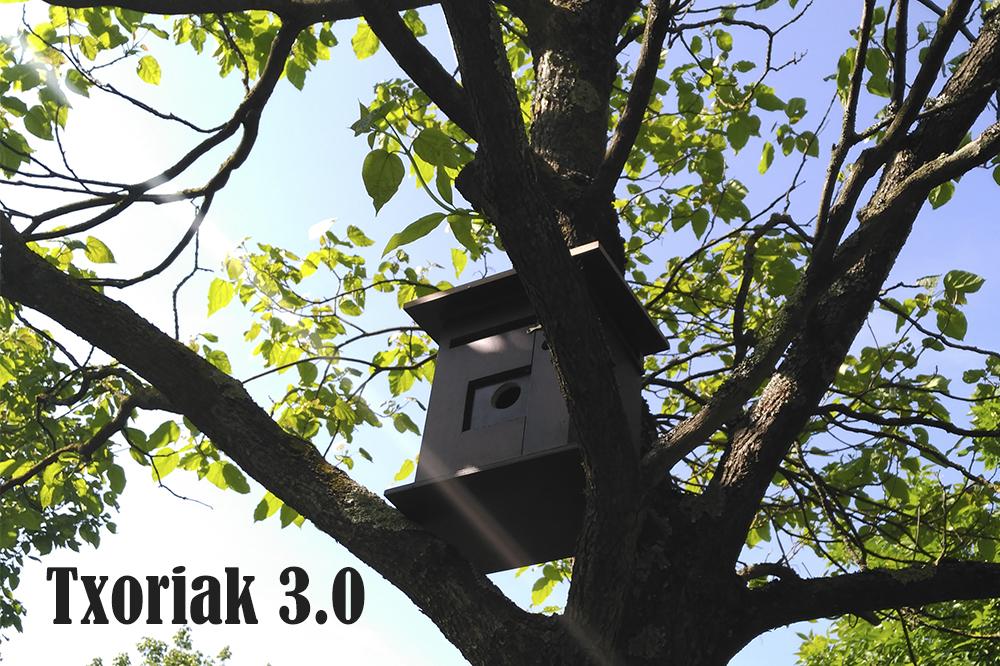 imagen de entrada del blog: ¡Arrancamos la tercera edición de Txoriak!